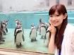 zoo_11 - 105
